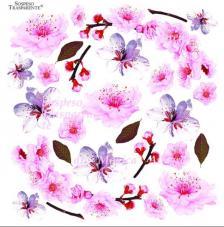 Sospeso transparente predisenyat Cherry Blossom 23x23 cm