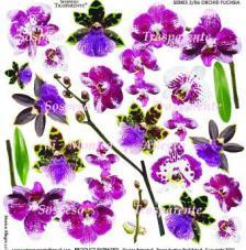 Sospeso transparente predisenyat Orchid Fuchsia 23x23 cm