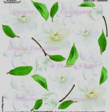 Sospeso transparente predisenyat Gardenia 23x23 cm