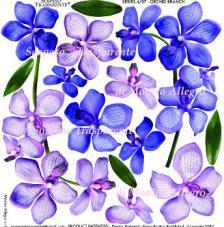 Sospeso transparente predesigned  Orchid Branch 23x23 cm