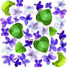 Làmina adhesiva Violeta 23x23 cm
