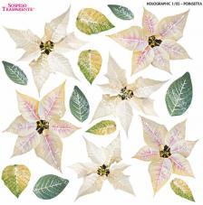 Sospeso transparente Ponsethia 23x23 cm