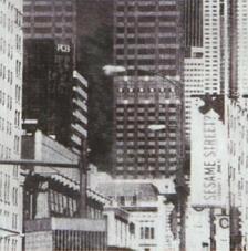 Tissu Newyork rollo 30cmx5m