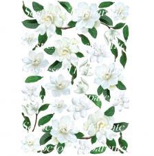 Papel decoupage gardenia blanca 35x50 cm