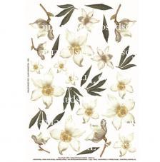 Papel decoupage helleboro blanca 35x50 cm