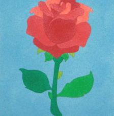 Rosa. 20x18 cm precortado