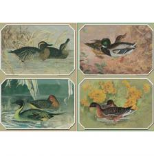Papel decoupage patos 45x32 cm