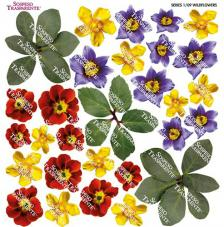 Sospeso transparente prediseñado Wildflowers 23x23 cm