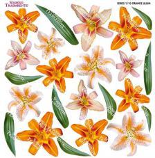 Sospeso transparente prediseñado Orange Lilium 23x23 cm