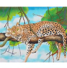 Leopardo. 2 mides disponibles