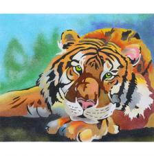 Tigre. 2 medidas disponibles