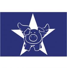 Stencil My Style Star Pig 14,8x21 cm