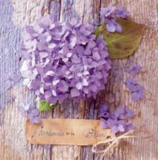 20 servilletas. Hortensia Azul
