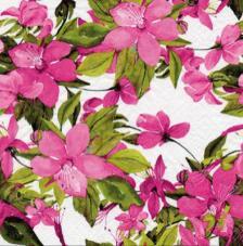 20 servilletas. Clematis Rosa