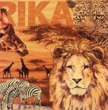 20 Servilletas. África