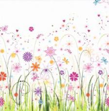 20 Servilletas. Prado floral