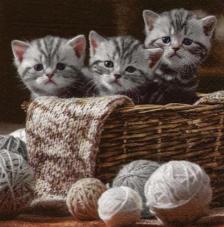 20 servilletas. Gatitos cesta lana
