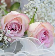 20 servilletas. Ambiente romántico