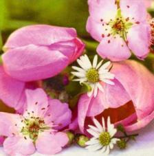 20 servilletas. Flor rosa