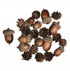 Mezcla artificial de cono de bellota 27 pcs. 2-4 cm