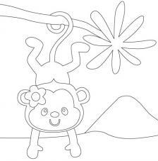 Mono. 20x20 cm Precortado