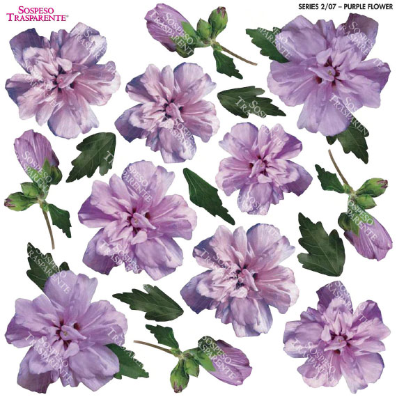 Sospeso transparente predisenyat Purple Flower 23x23 cm