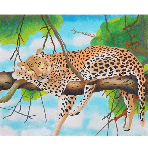 Leopardo. 2 mides disponibles