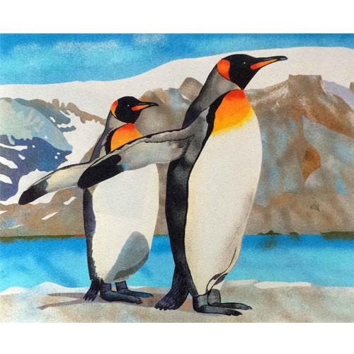 Pingüins. 2 mides disponibles