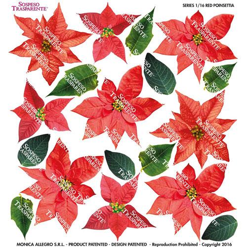 Sospeso transparente prediseñado Ponsetia roja 23x23 cm