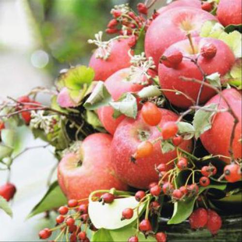 20 servilletas. Manzanas