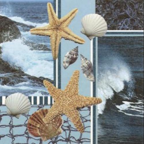 20 servilletas. Estrellas de mar